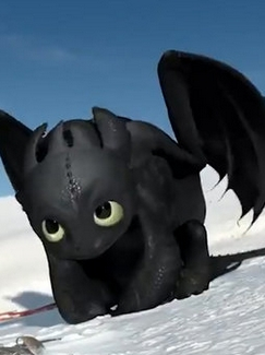 Toothless wig from How to Train Your Dragon