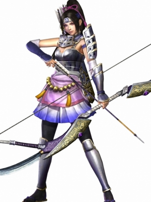Inahime wig from Samurai Warriors