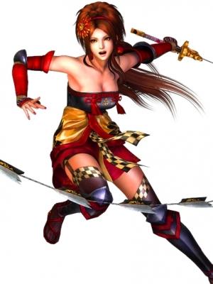 Kaihime wig from Samurai Warriors