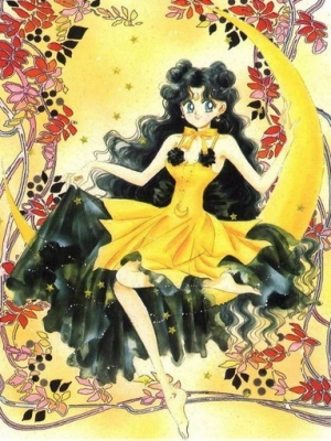 Luna wig from Sailor Moon