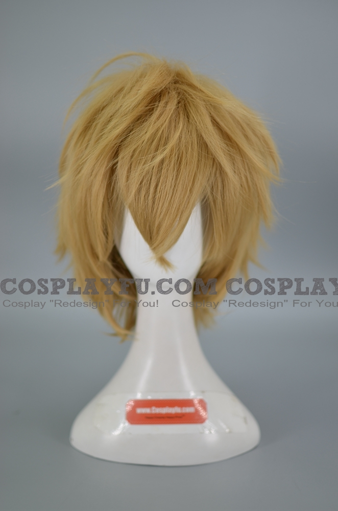Kyouya Wig from Wolf Girl and Black Prince