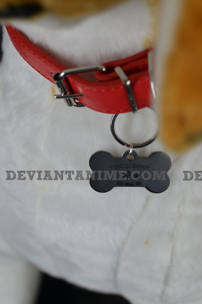 40503-Custom-Pet-Tag-2-4.jpg