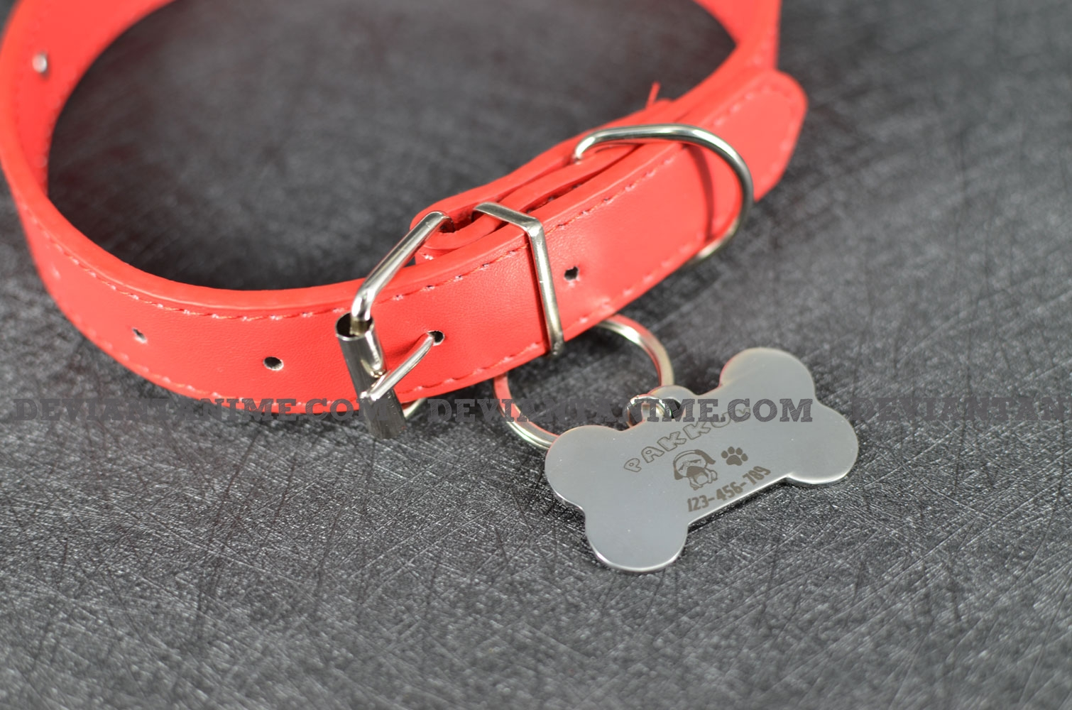 40503-Custom-Pet-Tag-3-7.jpg
