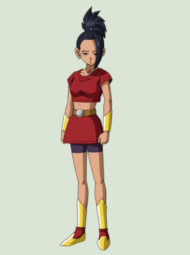 Kale Cosplay Costume from Dragon Ball Super