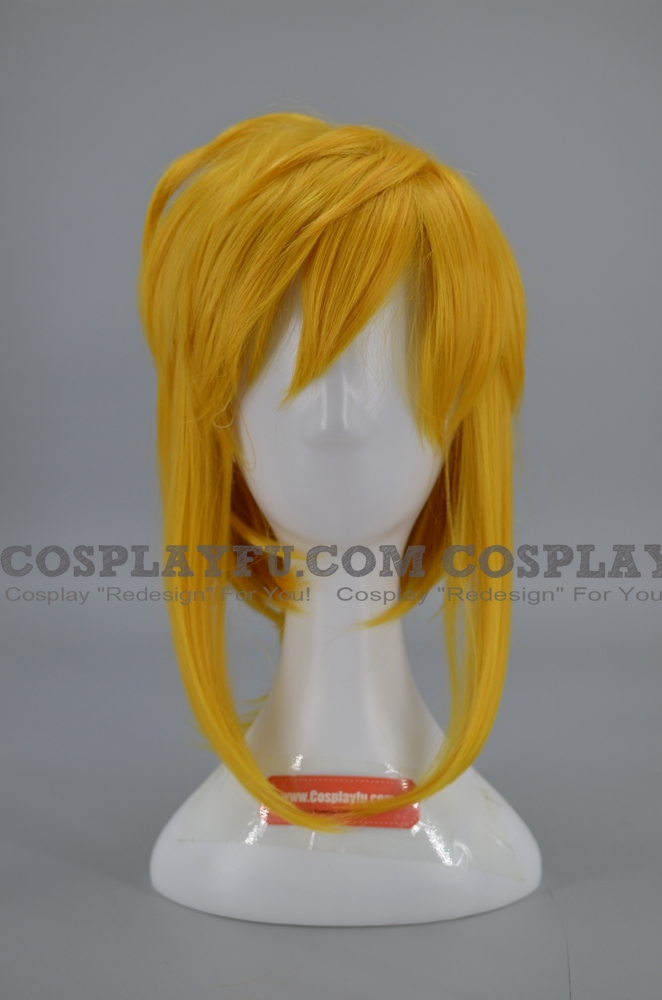 Link Wig from The Legend of Zelda Breath of the Wild