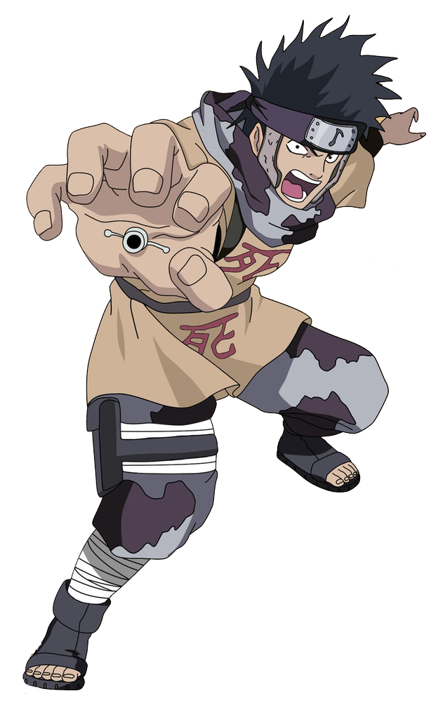 Abumi Cosplay Costume from Naruto