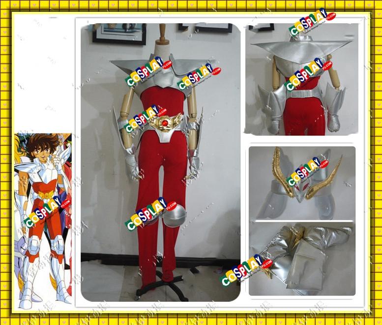 Pegasus Seiya Cosplay Costume from Saint Seiya (6780)
