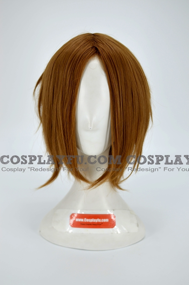 Ritsu Wig from K ON