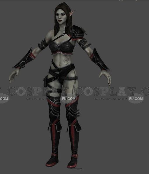 Alyn Cosplay Costume from Kingdoms of Amalur: Reckoning