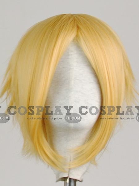 Tempester wig from Fairy Tail