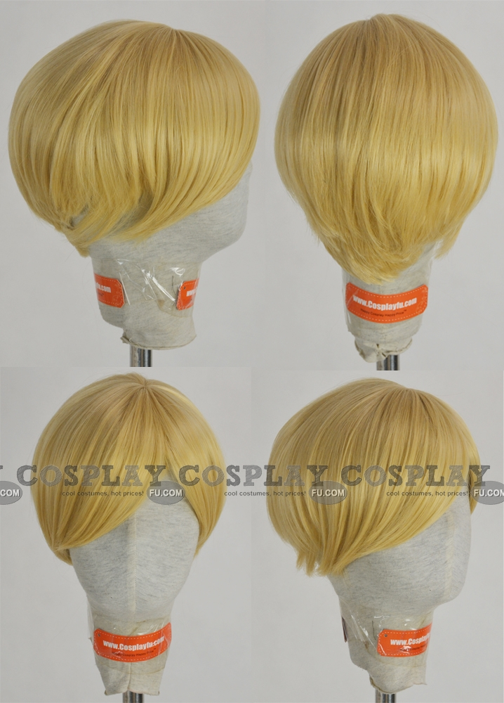 Erwin Wig from Attack On Titan