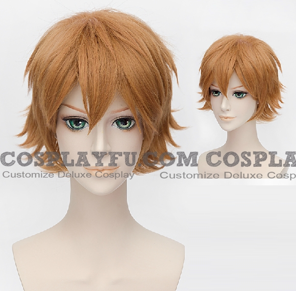 Nishiki Wig from Tokyo Ghoul
