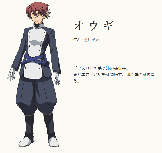Oogi Cosplay Costume from Utawarerumono: Itsuwari no Kamen