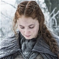 Sansa Cosplay Costume from Game of Thrones