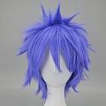 Short Purple Wig (6628)