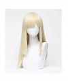 Blonde Long Straight Wig (4430)